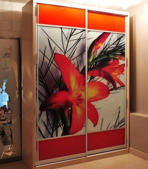 Встроенные шкаф купе с цветами