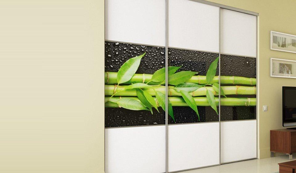 зеленые шкафы купе фото